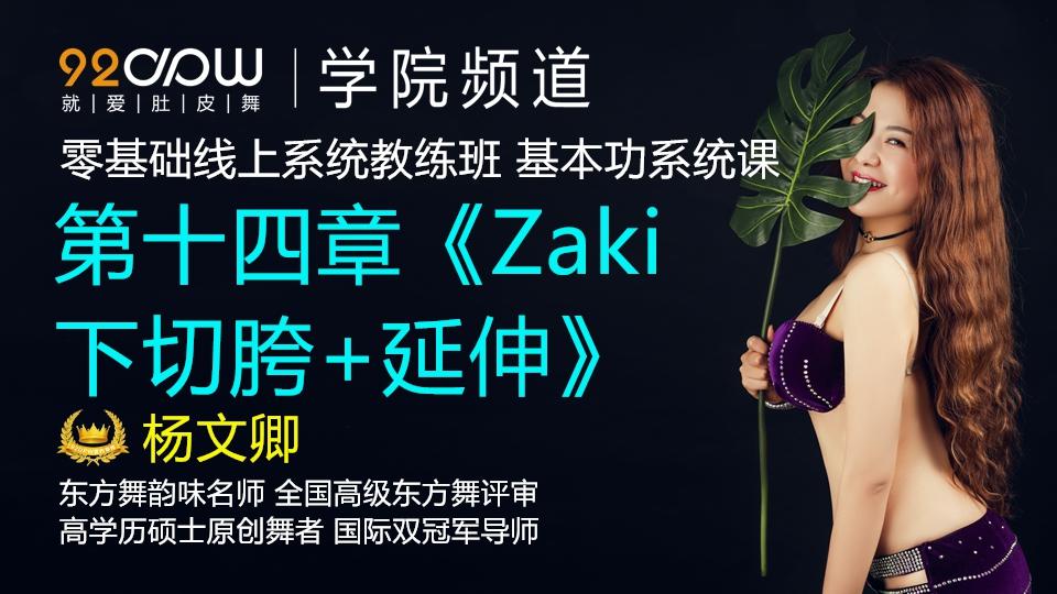 第十四章《Zaki下切胯+延伸》